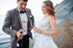 愉快的新婚佳偶夫妇 美丽的新娘和新郎在一套衣服用香槟在山背景  免版税库存图片