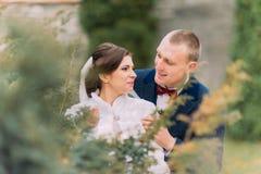 愉快的新婚佳偶对,新娘和新郎,在婚礼步行在美丽的绿色公园 库存照片