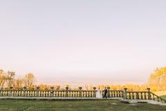 愉快的新婚佳偶握手并且走靠近老篱芭在晴朗的领域的背景 库存照片