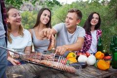 愉快的朋友在有的公园野餐在一个晴天 获得小组成人的人民在夏天野餐的乐趣 免版税图库摄影