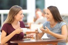 愉快的朋友有交谈在酒吧 免版税图库摄影