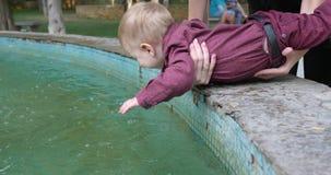 愉快的母亲在喷泉附近拿着她的胳膊的好奇儿子在公园 股票录像