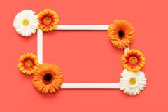 愉快的母亲节、妇女天、情人节或者生日居住的珊瑚Pantone颜色背景 珊瑚舱内甲板位置贺卡 免版税库存图片