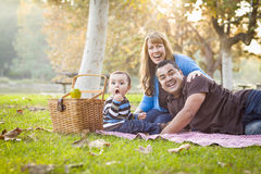 愉快的混合的族种种族家庭有野餐在公园 库存照片
