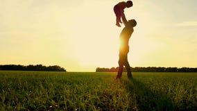 愉快的演奏自然的父亲和儿子在公园在日落 父亲慢慢地投掷孩子并且捉住他 股票录像