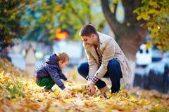 愉快的父亲和儿子获得乐趣在秋天公园 库存图片