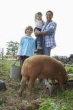愉快的父亲和孩子有猪的在猪圈 免版税图库摄影