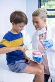 愉快的牙医教的男孩掠过的牙 库存图片