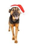 愉快的牧羊人圣诞老人 免版税库存图片