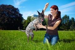 愉快的狗她使用的妇女 库存图片