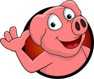 愉快的猪动画片查出 免版税库存图片