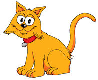 愉快的猫715 免版税库存照片
