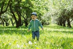 愉快的男孩在一个开花的庭院里 库存图片