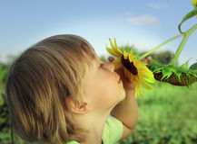 愉快的男孩用向日葵 免版税库存图片