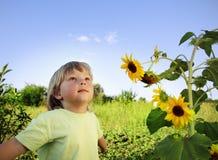 愉快的男孩用向日葵 库存照片