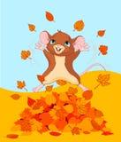 愉快的秋天鼠标 免版税图库摄影