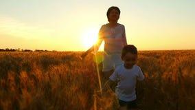 愉快的系列 孩子和他的母亲横跨金黄麦子的领域跑反对日落的背景 影视素材
