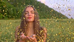 愉快的美丽的妇女画象吹金黄闪烁,在麦田在日落夏天,秀丽女孩的五彩纸屑的礼服的 影视素材