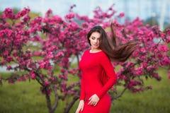 愉快的美丽的少妇在春天开花公园 图库摄影