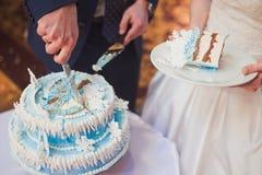 愉快的美丽的新婚佳偶裁减蛋糕在餐馆 免版税库存照片