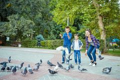 愉快的美丽的母亲和两个儿子喂养了鸽子 免版税图库摄影