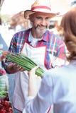 愉快的资深农场主销售有机蔬菜在农夫的市场 免版税库存照片