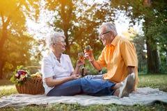 愉快的资深夫妇在公园庆祝周年 库存图片