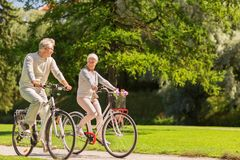 愉快的资深夫妇骑马在夏天公园骑自行车 库存照片
