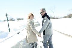 愉快的资深夫妇画象在冬天晒干 库存照片