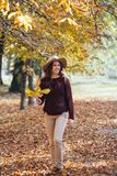 愉快的走户外在舒适毛线衣和帽子的秋天公园的微笑少妇 温暖的晴朗的天气 秋天概念 复制 免版税库存图片