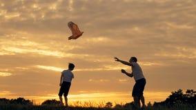 愉快的跑在有一只风筝的草甸的家庭父亲和孩子在夏天在日落 影视素材