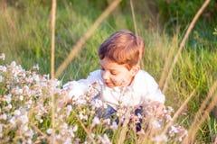 愉快的逗人喜爱的孩子采摘在领域开花 免版税图库摄影