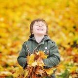 愉快的逗人喜爱的男孩获得与秋叶的乐趣在公园 库存图片