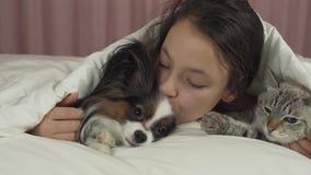 愉快的青少年的女孩与狗Papillon和在床股票英尺长度录影的泰国猫沟通 股票录像