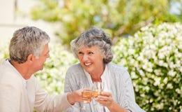 愉快的高级夫妇饮用的酒和敬酒 免版税库存图片