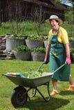 愉快的高级工作在她的庭院里 库存图片