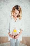 愉快的系列 一名孕妇 库存照片