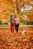 愉快的年轻加上走在公园的两条逗人喜爱的狗 库存图片