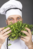 愉快的年轻厨师嗅到的荷兰芹特写镜头  免版税库存照片