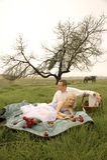 愉快的年轻夫妇有一顿浪漫野餐户外在绿色领域 免版税库存图片