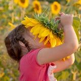 愉快的婴孩嗅到的向日葵 免版税图库摄影