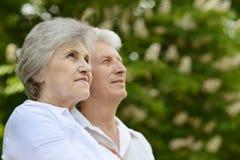 愉快的更旧的夫妇 免版税库存图片