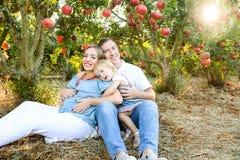 愉快的husbent和怀孕的妻子画象有逗人喜爱的女婴女儿的获得休息和乐趣在pomegrate果子从事园艺 家庭 免版税库存照片