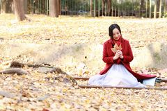 愉快秋天的妇女和极乐,美丽的妇女坐路轨银杏树biloba在秋天公园充分离开 库存图片