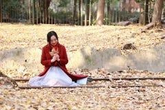 愉快秋天的妇女和极乐,美丽的妇女坐路轨银杏树biloba在秋天公园充分离开 免版税库存图片