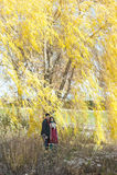 愉快年轻印地安夫妇摆在 免版税库存照片