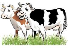愉快2头的母牛 向量例证