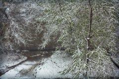 意外的降雪 免版税库存照片