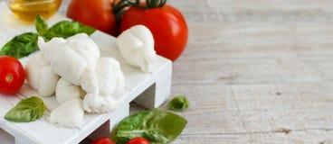 意大利乳酪无盐干酪nodini用蕃茄和草本 图库摄影