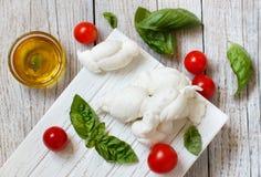 意大利乳酪无盐干酪nodini用蕃茄和草本 免版税库存图片